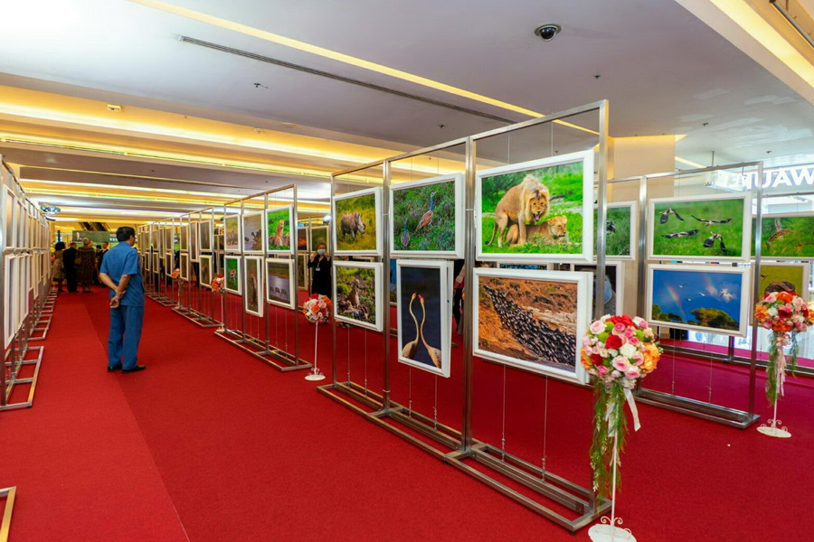 "นิทรรศการภาพถ่าย ""MAGICAL KENYA - TANZANIA"" 20-23 Feb 2020 @Lifestyle Hall Siamparagon"